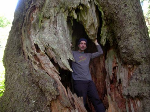 treeboy.jpg